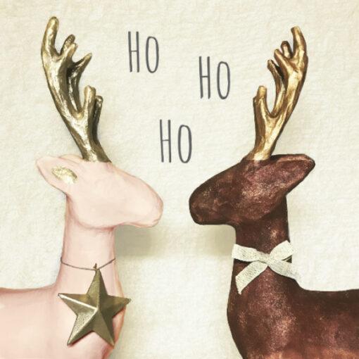 CatPic Kerst 1