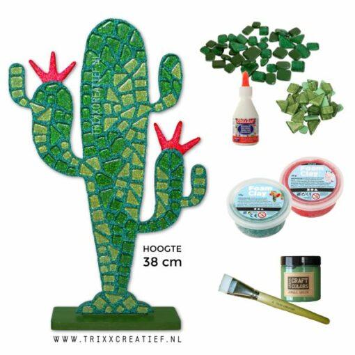 73491 Cactus Mozaiek compleet DIY pakket